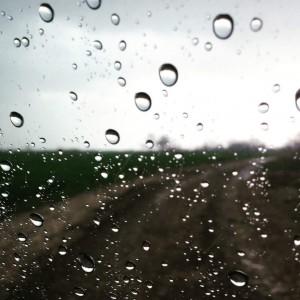 Yağmur Telaşı